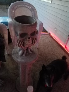 No candy yet  The demon dog is NOT a prop, IT'S ALIVE!!!!