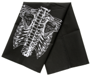 sp_anatomical_dish_towel_set_3